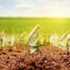 Сколько будет стоить земля в Украине?