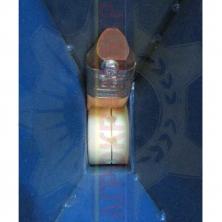 Сівалка ЧС7 (СДЧМ-3) 3-рядна для часнику на мотоблок